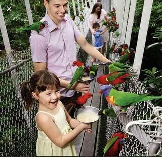 🚚 Jurong bird park