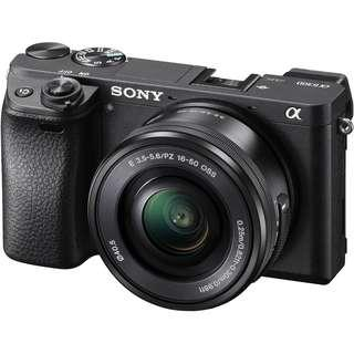 Sony Alpha 6300 with SEL 16-50mm lens