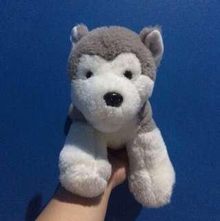DOWNPRICE!!! Husky Plush (Boneka)