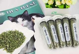 Cat mint