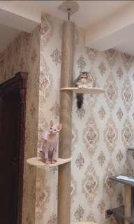 SALE! $69.90 ALL IN WITH FREE DELIVERY CEILING CAT TREE POLE PLAYHOUSE KITTEN
