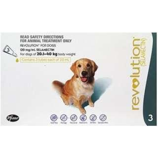 Revolution for large dogs (20.1-40kg)