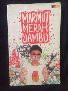 Novel Raditya Dika - Marmut Merah Jambu