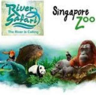 🚚 River Safari