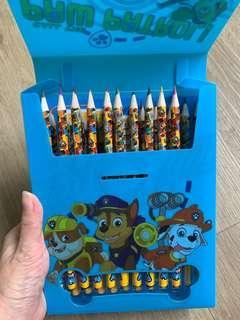 Paw Patrol Colour Pencil Set