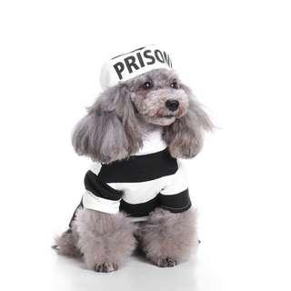 Cat and Dog Pet Costume - Prisoner
