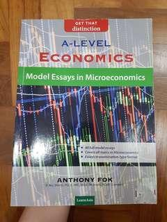 H2 Micro Econs Essay Guidebook