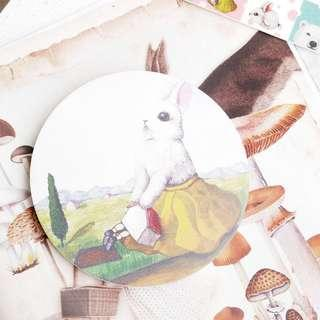 🚚 兔子陶瓷吸水杯墊