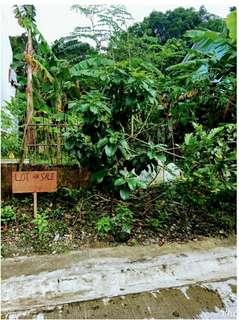 Lot for sale rizal