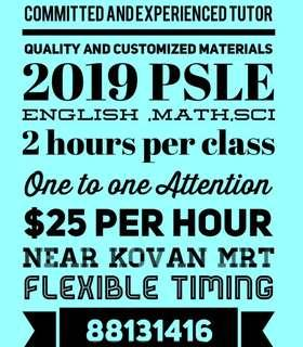 PSLE 2019 English Math Science
