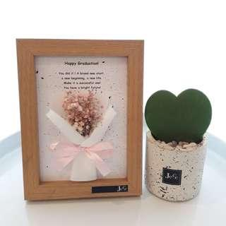 Flower Frame 5R Dried Import Baby Breath (Ready Stock)