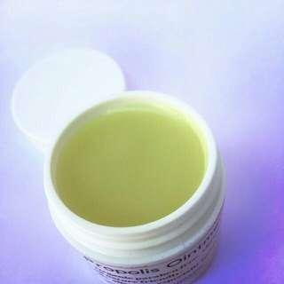 Organic bee propolis ointment for insect bites