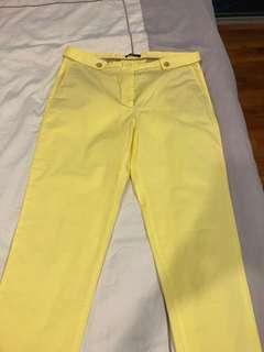 Brand new Massimo dutti pants