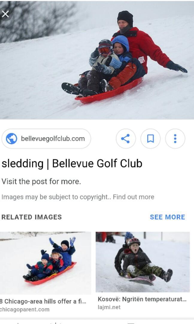 Snow Sled Large (Blue)
