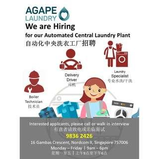 Laundry Specialist (Full time/Part time)