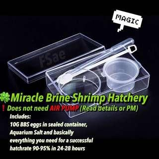 🍀brine shrimp hatchery bbs baby sea monkey for fish fry Betta food all in one. no need air pump read detail!