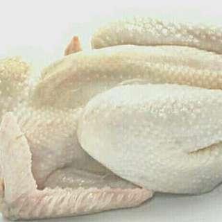 ayam kampung potong berat 0.8 kg - AyamCik