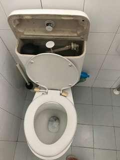 Toilet repair wc 🚽