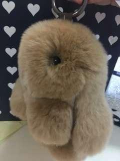 Brown Fluffy Bunny