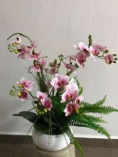 New 3D orchid flower arrangement