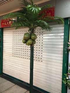 Artificial Coconut tree-2.5 m