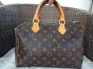 LV speedy 30 mono bag