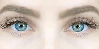 Angel Wings Eyelashes Extension