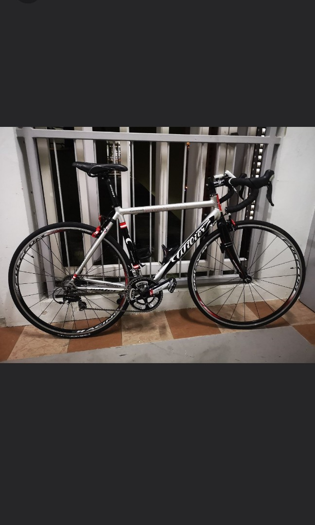 558e333a7fd WILIER TRIESTINA FULL BIKE, Bicycles & PMDs, Bicycles, Road Bikes on ...