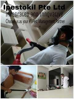 🎄Bedbugs Pest Control Services / Affordable / Bedbugs Killer