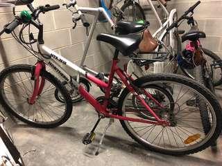 Northern Star bike small frame