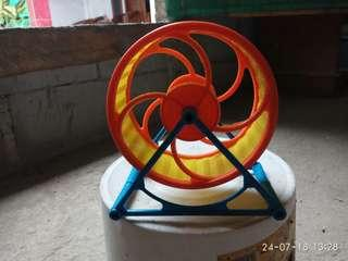 kincir hamster