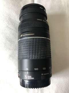 Canon 75-300 telephoto lens