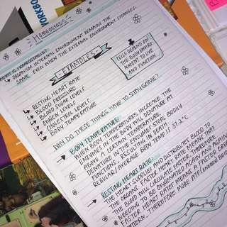 NCEA L3 INTERNALS + NOTES