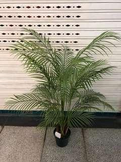 1.65 m Artificial palm tree