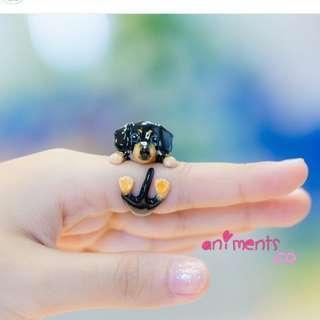 Dachshunds Ring