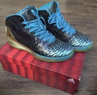 Adidas Derrick Rose 3.5 Year of the Snake size 46 Fullset with Box