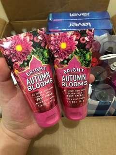 Bright Autumn Blooms