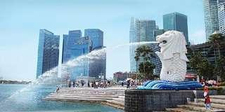 Singapore City Tour All in package