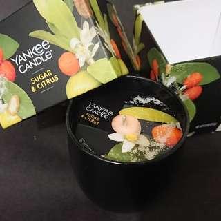 限定版 Yankee Candle 蠟燭 Trompe L'oeil—Sugar & Citrus