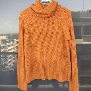 Knit Beige Turtleneck