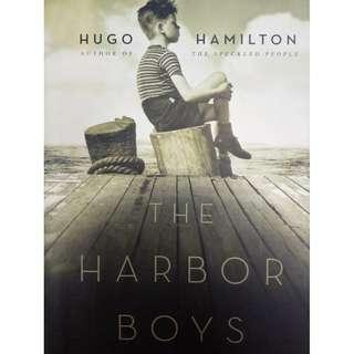 Hardcover novel by an Irish master story teller