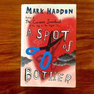 Book: Mark Haddon / A Spot of Bother
