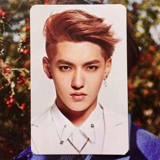 EXO M Overdose Kris Official Photocard
