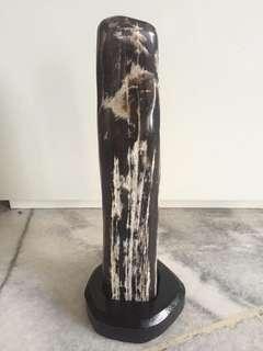 Tangkuban Parahu wood fossil