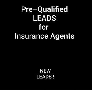 Qualified Leads for Insurance & Property Agents!