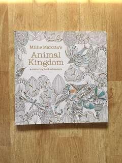 Coloring Book - Animal Kingdom