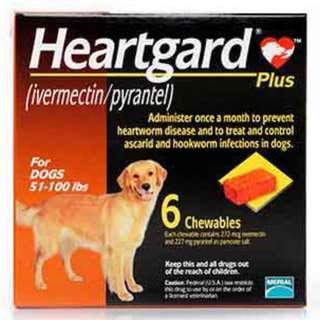 [全新香港行貨]Heartguard 心絲蟲藥(6粒)50lbs to 100 lbs