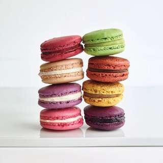 Macaroon - Open for Order