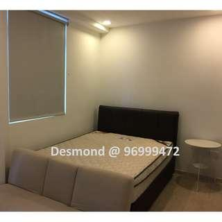 Affordable Freehold Studio For Sale With Tenancy !