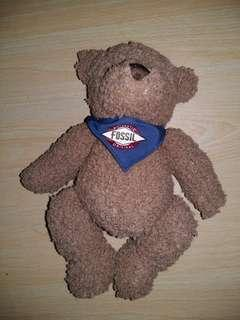 Authentic Fossil Bear